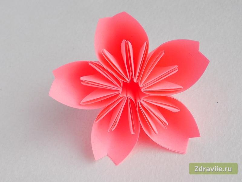 Как сделать цветок сакуры из бумаги