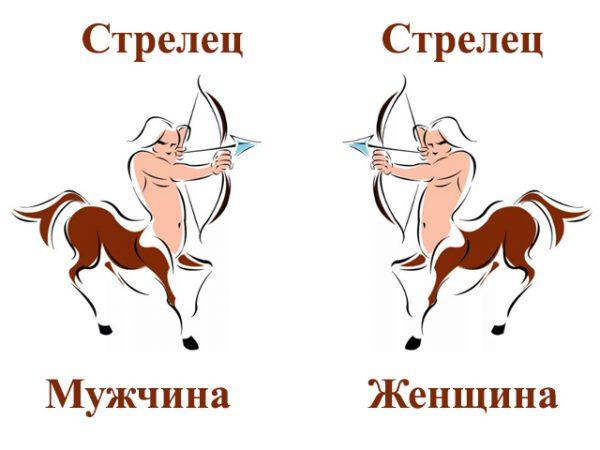 strelets-strelets-sovmestimost-v-lyubovnyh-otnosheniyah