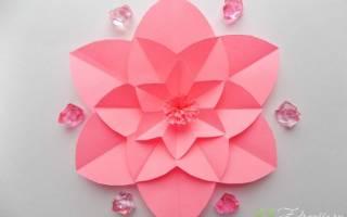 Как сделать цветок из бумаги – мастер класс