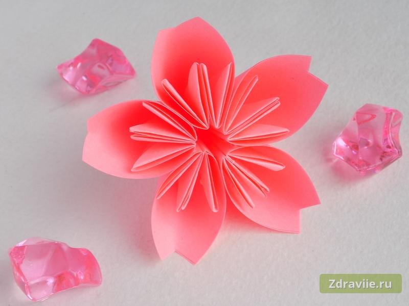 Мастер-класс: Как сделать цветок сакуры из бумаги